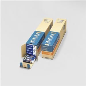 パナソニック EVOLTAアルカリ乾電池 単3形 100本入 LR6EJN/100S - 拡大画像