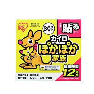 (まとめ) アイリスオーヤマ ぽかぽか家族 貼るタイプ レギュラー 【×5セット】 - 拡大画像