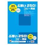 (まとめ) キョクトウ・アソシエイツ ぶ厚いコピー用紙 A4 250gsm 【×10セット】