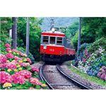 ビバリー M71-860 あじさい咲く箱根登山鉄道 1000P 【ジグソーパズル】