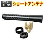 リアルカーボンショートアンテナ 85mm ホンダ ライフ