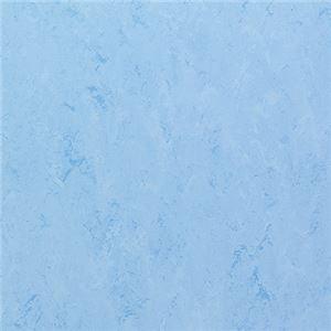 東リ ビニル床タイル フェイソールプルス サイズ 45cm×45cm 色 FPT2034 14枚セット【日本製】 - 拡大画像
