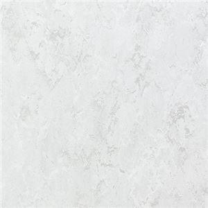 東リ ビニル床タイル フェイソールプルス サイズ 45cm×45cm 色 FPT2038 14枚セット【日本製】 - 拡大画像