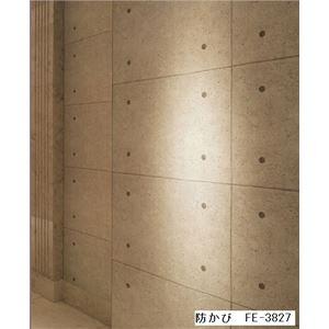 コンクリート調 のりなし壁紙 サンゲツ FE-3827 92cm巾 5m巻【防カビ】【日本製】 - 拡大画像