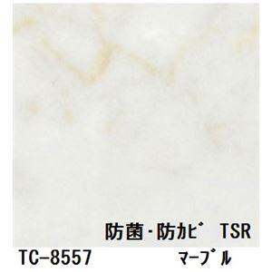 抗菌・防カビ仕様の粘着付き化粧シート マーブル サンゲツ リアテック TC-8557 122cm巾×3m巻【日本製】 - 拡大画像