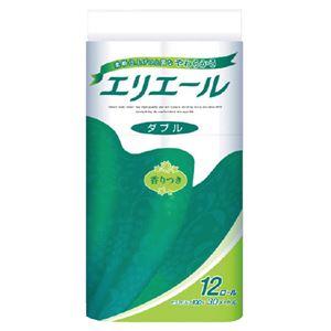 (まとめ)大王製紙 エリエール トイレットペーパー W 12ロール【×5セット】