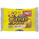 (まとめ)アイリスオーヤマ ぽかぽか家族 貼る レギュラー 10個(×20セット)