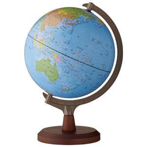 (まとめ)レイメイ藤井 行政タイプ地球儀(組立式)(×3セット) - 拡大画像
