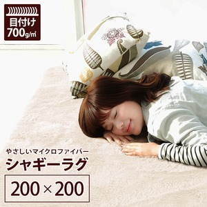 ラグマット 洗える 2畳 正方形(200×200cm) アイボリーホワイト 【やさしいマイクロファイバーシャギーラグ】 〔北欧風 丸洗い カーペット〕 - 拡大画像