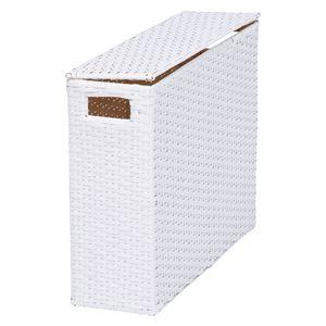 トイレットペーパーボックス/トイレ収納 【ホワイト 幅46×奥行14×高さ36cm】 スチール 〔御手洗 レストルーム〕 - 拡大画像