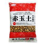 (まとめ)サンアンドホープ 赤玉土 大粒 2L【×10セット】