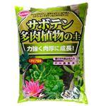 (まとめ)サンアンドホープ サボテン多肉植物の土 5L【×4セット】