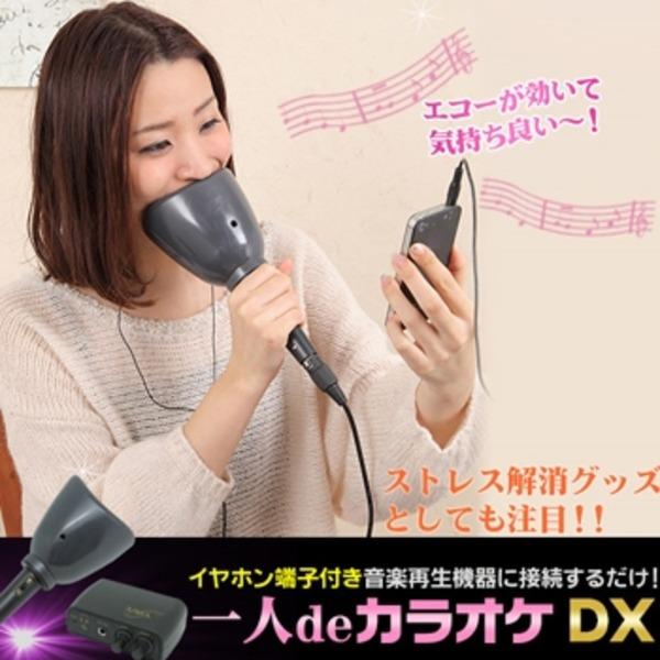 【送料無料】1人DEカラオケDX(家庭用カラオケセット)