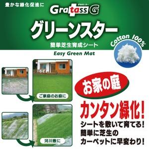グリーンスター(芝生育成シート約150×100cm 1枚) - 拡大画像