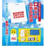熱中症対策応急処置袋12袋入り1箱