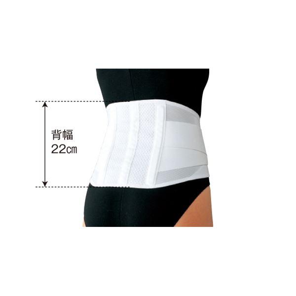 日本シグマックス 腰痛ベルト マックスベルトCH ライト M 340202