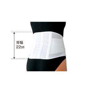 日本シグマックス 腰痛ベルト マックスベルトCH ライト LL 340204 - 拡大画像