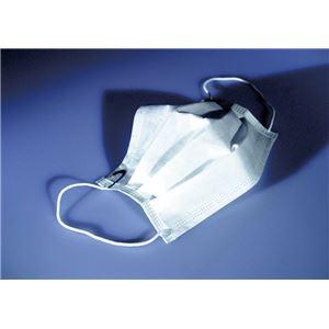 (まとめ)積水化成品工業 マスク ピュアパルプリーツマスク(2)2層タイプ100P P2-001【×10セット】 - 拡大画像