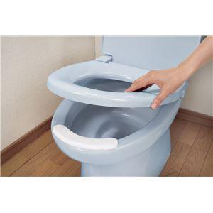 (まとめ)サンコー 排泄物処理 おしっこ吸いとりパットL15コ入 AE-61【×10セット】 - 拡大画像