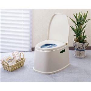 幸和製作所 樹脂製ポータブルトイレ テイコブポータブルトイレ PT01 - 拡大画像