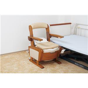 アロン化成 木製ポータブルトイレ 安寿 家具調トイレAR-SA1(シャワピタ) (1)ノーマルL 533-810 - 拡大画像
