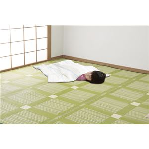 日本アトピー協会推薦カーペットグリーン本間8畳 382×382cm - 拡大画像