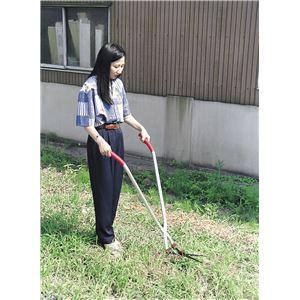 立作業用 芝生雑草刈込バサミ - 拡大画像