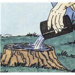 スタンプ・アウト2個組(切り株処理剤)