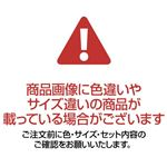ワンタッチ大人用幌蚊帳 border=