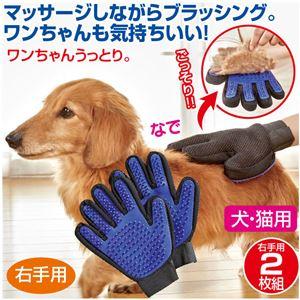 ペットブラッシンググローブ/ペット用品 【右手用 2枚組】 重さ65g 洗える 〔犬 猫 リビング〕