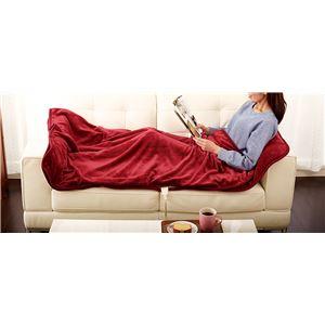 寝袋風マット/寝具 【ワイン】 洗える 日本製 ダニ対策 室温センサー 切忘れ防止タイマー付 『あったか寝ころんぼマット』