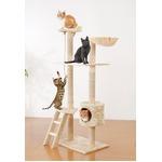 猫 ペット キャット タワー アイボリー 猫じゃらし付き