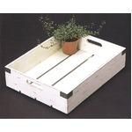 レトロ調 園芸用ウッドボックス/フラワーボックス 【アンティークホワイト LLサイズ】 幅56cm 木製 苗箱 『カルチベーター』
