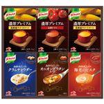 (まとめ) 味の素 クノールプレミアムスープギフト KPZ-20N 【×2セット】