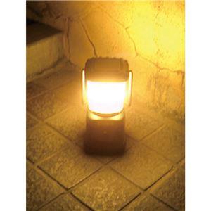 LEDランタン/LEDライト 【暖色LED搭載】 電源/単1形 『エクスプローラー』 〔キャンプ アウトドア バーベキュー 災害時〕