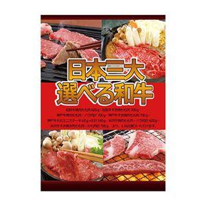 A3パネル日本三大選べる和牛 - 拡大画像