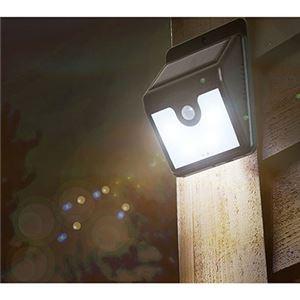 モーションセンサー付き照明 30502