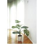 光の楽園【光触媒/人工観葉植物】0.75m モンステラ