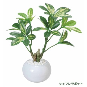 光の楽園【光触媒/人工観葉植物】23cm シェフレラポット - 拡大画像