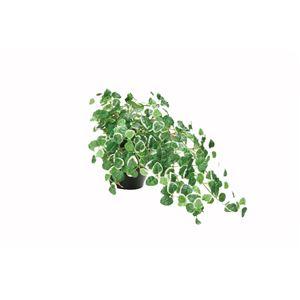 観葉植物/フェイクグリーン 【ミムラ】 日本製 光触媒 消臭 抗菌 ホルムアルデヒド対策 『光の楽園』 〔リビング〕 - 拡大画像
