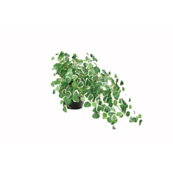 観葉植物/フェイクグリーン 【ミムラ】 日本製 光触媒 消臭 抗菌 ホルムアルデヒド対策 『光の楽園』 〔リビング〕