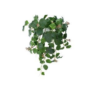 観葉植物/フェイクグリーン 【壁掛け フレンチアイビー】 日本製 光触媒 消臭 抗菌 ホルムアルデヒド対策 『光の楽園』 - 拡大画像