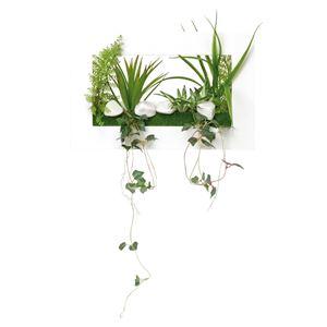 光の楽園【光触媒/人工観葉植物】3Dアートドラセナ - 拡大画像