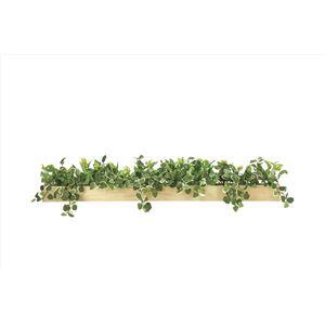観葉植物/フェイクグリーン 【ウッドボックス SL】 日本製 光触媒 消臭 抗菌 ホルムアルデヒド対策 『光の楽園』