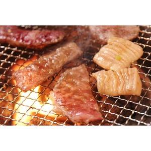 アメリカ産 牛カルビ 【焼肉用 500g】 厚さ5mm 精肉 牛肉 〔ホームパーティー 家呑み バーベキュー〕 - 拡大画像