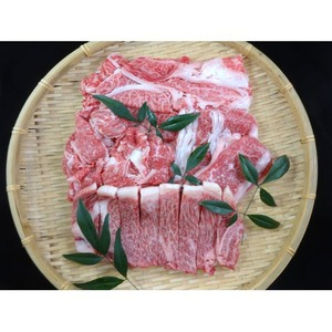 仙台牛 牛肉 A5ランク 【食べ比べセット 1kg】 切り落とし・カルビ・肩ロース・サーロイン 精肉 霜降り - 拡大画像