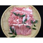 仙台牛 牛肉 A5ランク 【食べ比べセット 1kg】 切り落とし・カルビ・肩ロース・サーロイン 精肉 霜降り