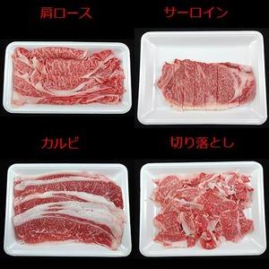 仙台牛 牛肉 A5ランク 【食べ比べセット 3kg】 切り落とし・カルビ・肩ロース・サーロイン 精肉 霜降り