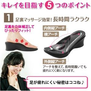 勝野式 足うらを癒すサンダル/突っかけ 【Lサイズ】 24~25cm ダイエットサポート
