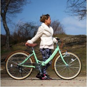 折りたたみ自転車 26インチ/グリーン(緑)×ブラウン 低床型 【Raychell】 レイチェル R-321N - 拡大画像